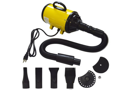 2. Belinde Pet Hair Grooming Dryer for Dogs and cats.