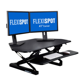 9.FlexiSpot Standing Desk 41""